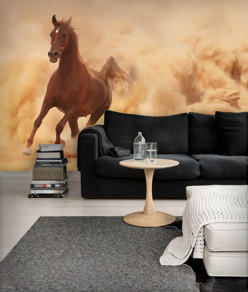 fototapeta-konie-49555108