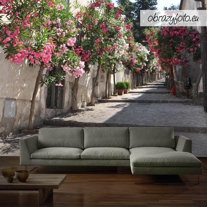 fototapeta-uliczka-z-kwiatami