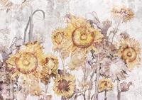 Obrazy słonecznik