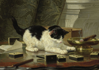 Fototapety koty