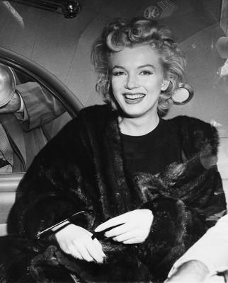 Marilyn Monroe - wf791