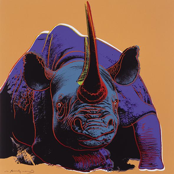 Nosorożec  - wf747