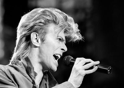 David Bowie - wf779