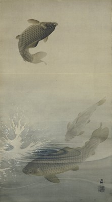 Ryby - wf199