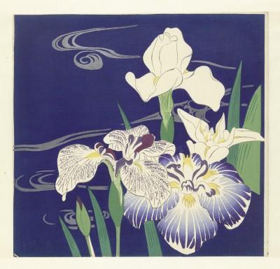 Kwiaty - wf140