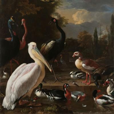 Ptaki - wf197