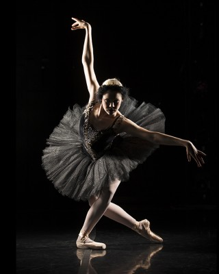 Baletnica - wf1142