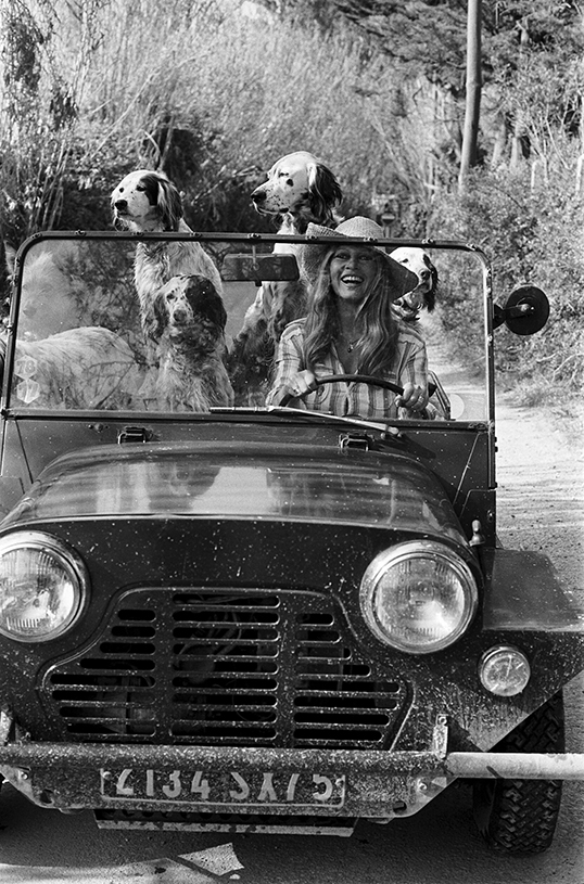 Brigitte Bardot - wf1798
