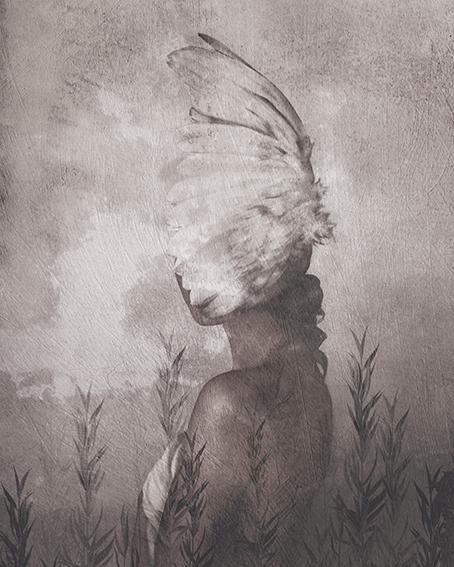Kobieta Ptak - wf1611