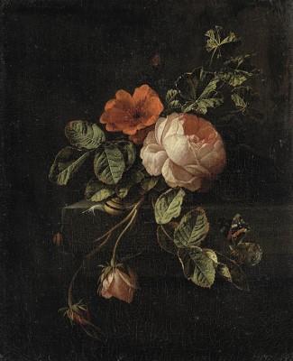 Botanika - wf443