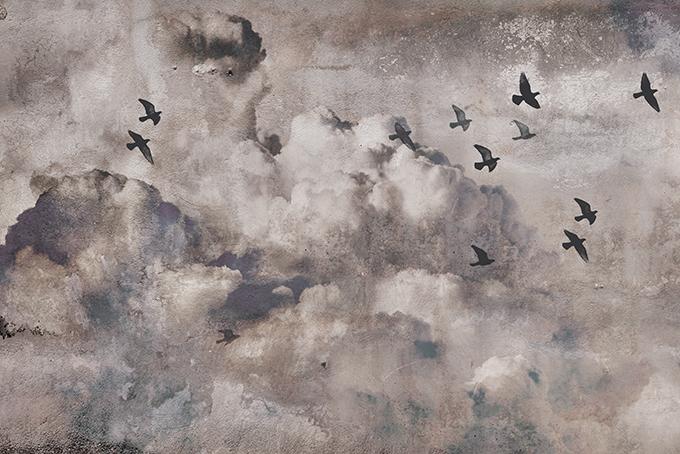 Chmury - wf1675