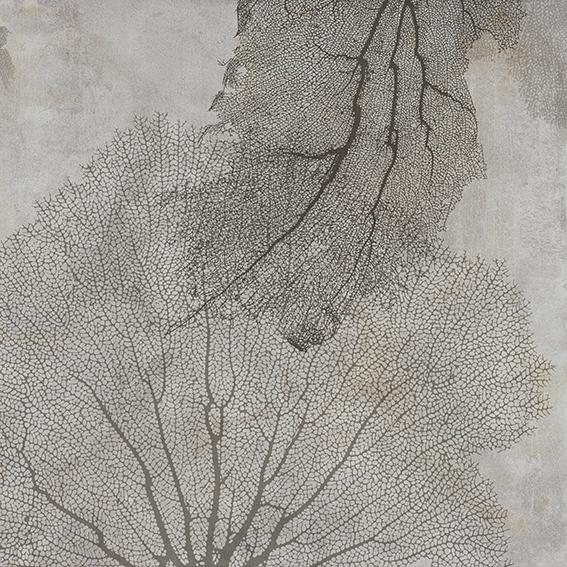 Tree - wf1814