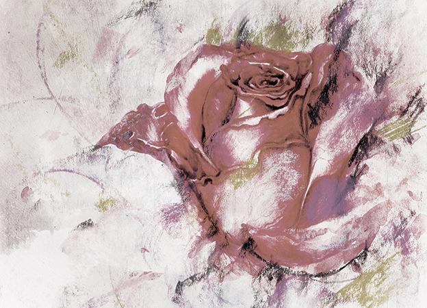 Róza - wf1759