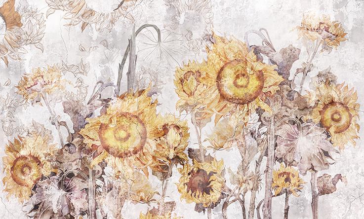 Słoneczniki - wf1762