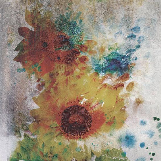 Słoneczniki - wf1761