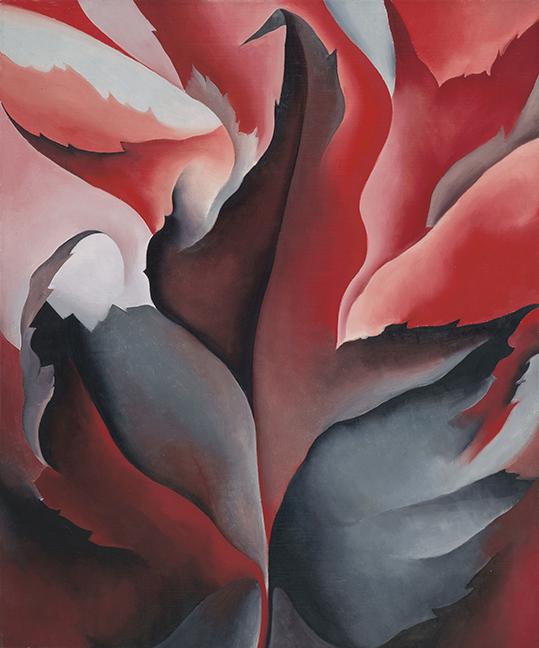 Modern Flower - G. O'Keeffe - wf1822