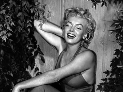 Marilyn Monroe - wf815