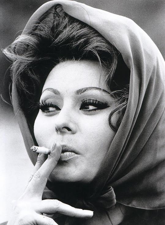 Sophia Loren  - wf1573