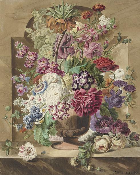 Botanika, Pieter van Loo, 1745-1784R. - wf722